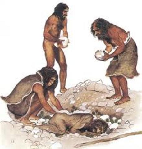 Etapa Domestica (Prehistoria)