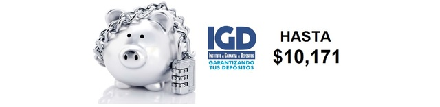Creación del IGD.
