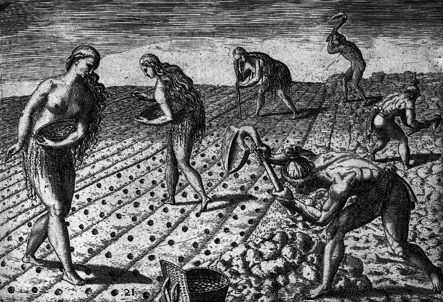 Seminole Ancestors