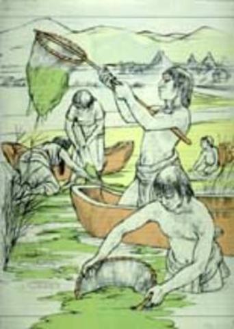 AZTECAS RECOLECTABAN ALGAS PARA LA ALIMENTASION DE LOS LAGOS