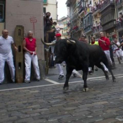 El funcionamiento de los toros, Día 4