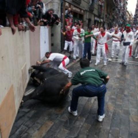 Cómo correr con los toros: Pastores