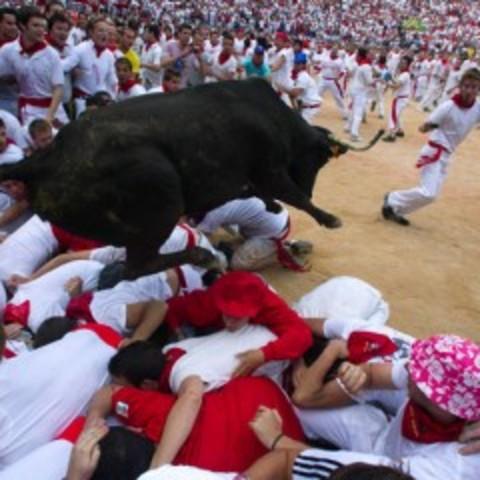 Cómo correr con los toros: Después de la ejecución