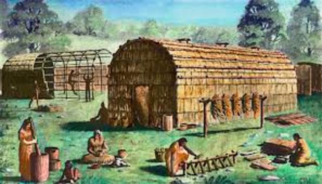 Division of Labour Amongst Iroquians