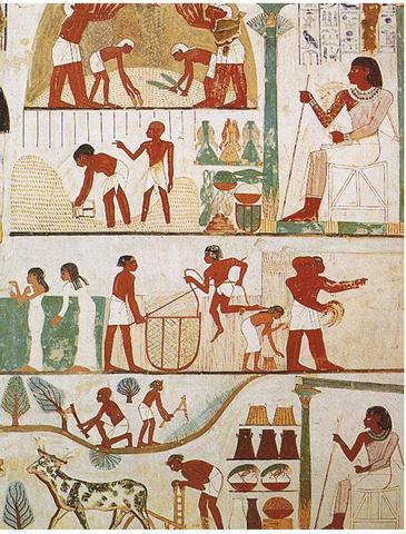 INSPECTORES EGIPCIOS
