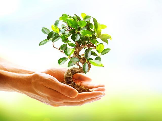 Το three-pit της Περιβαλλοντικής Εκπαίδευσης