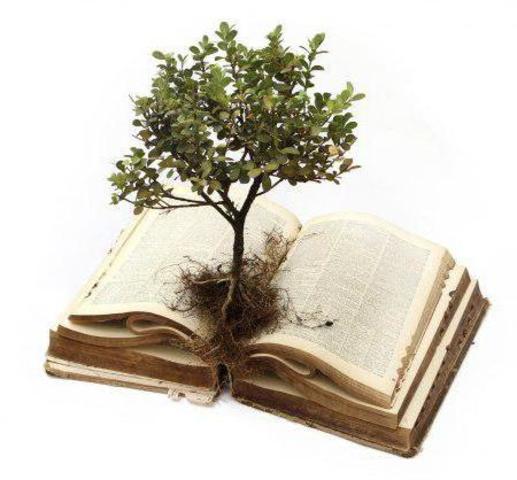 Вся гордость учителя в учениках, в росте посеянных им семян. (Д.И. Менделеев)