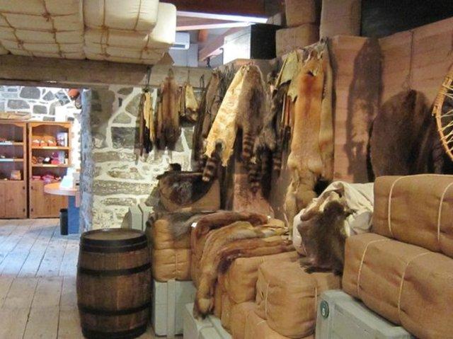 Economy of Fur (1/4)
