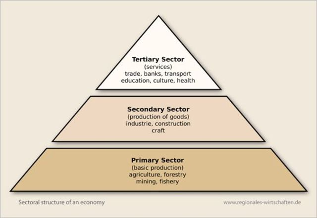 Sectors of Industry and The Rise of The Tertiary Sector