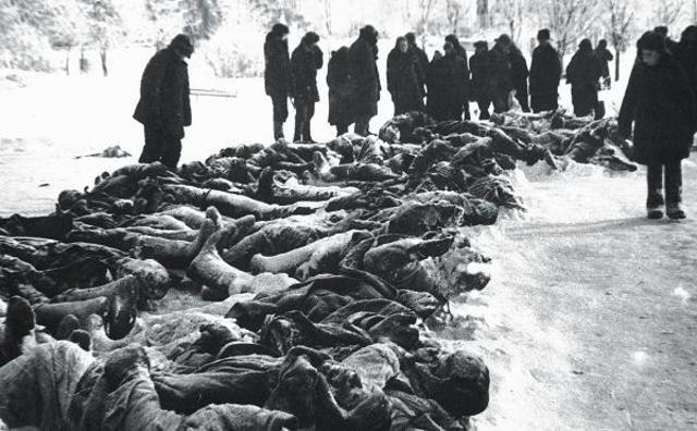 Вторая мировая война (Война между СССР и Германией)