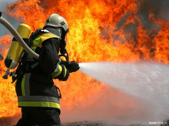 МВД - пожарная охрана.