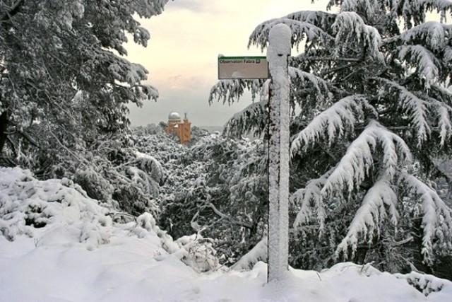 Nevda a Barcelona (climatic)