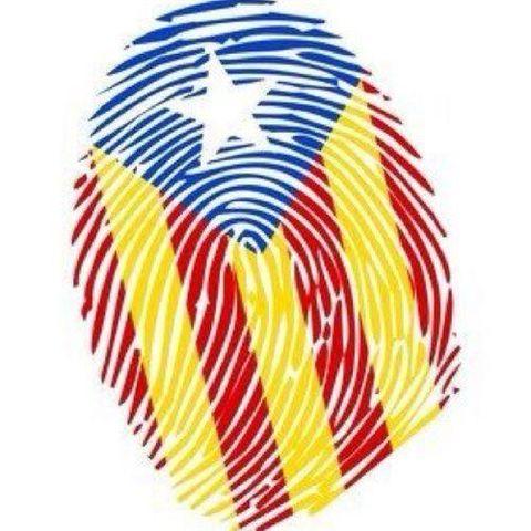 Diada de Catalunya (social)