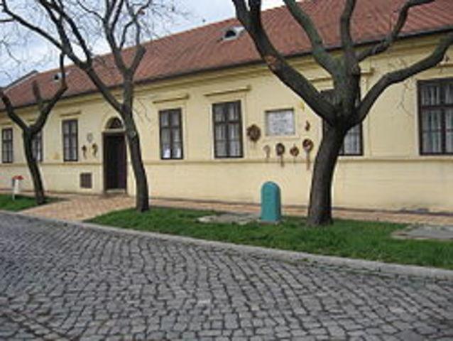 Erkel Ferenc a nemzeti opera megteremtője, a magyar Himnusz megzenésítője, kiváló sakkozó születése Gyulán.