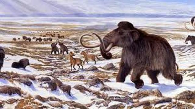 1000-800 a.c.