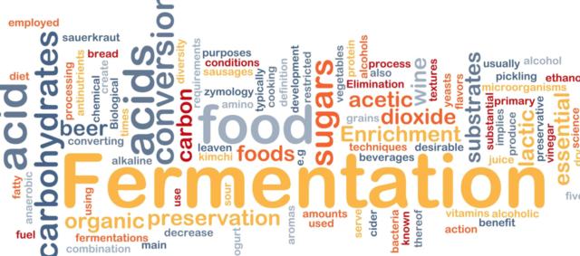 Microorganisms produce fermentation