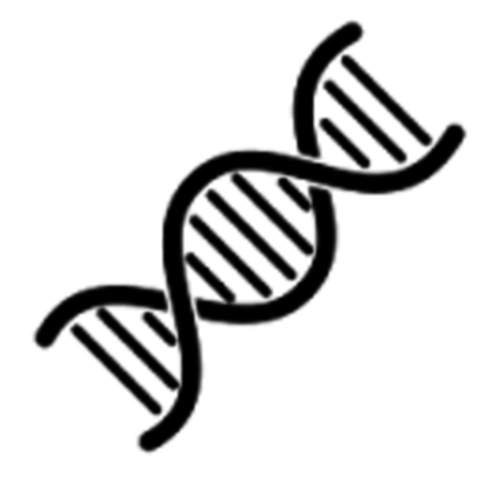 DNA is a double helix