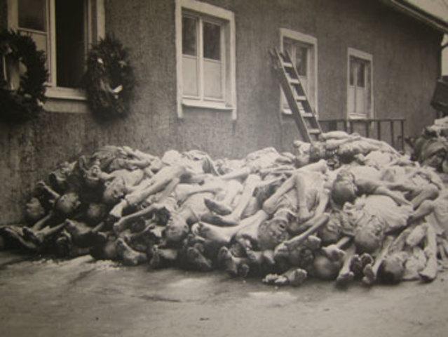 Ursachen des Völkermords