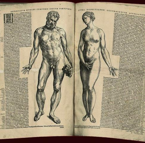 Vesalio publica la obra de De humani corporis fabrica, sobre la anatomía humana.