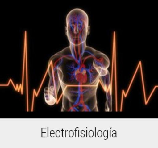 """John Walsh demuestra la naturaleza eléctrica de las descargas producidas por el órgano eléctrico del torpedo a raya eléctrica, """"nacimiento"""" de electrofisiología"""