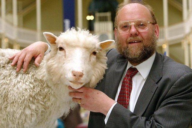 Clonación de la oveja Dolly.