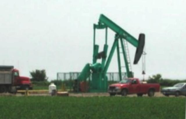 Primers pous de petroli