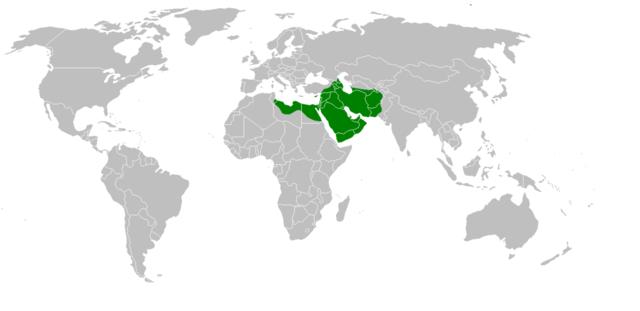 Conquest of Armenia