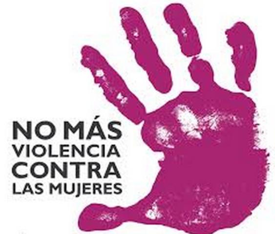 Ley General de Acceso de las Mujeres a una Vida Libre de Violencia. Derecho Social