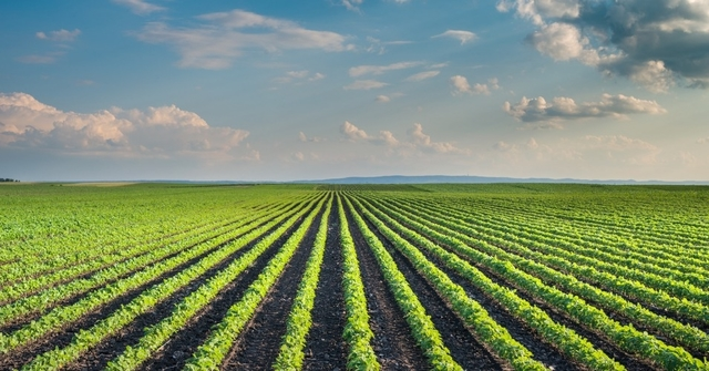 New ways of Farming