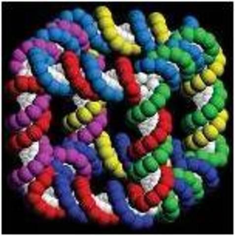 Самоорганизующиеся ДНК структуры