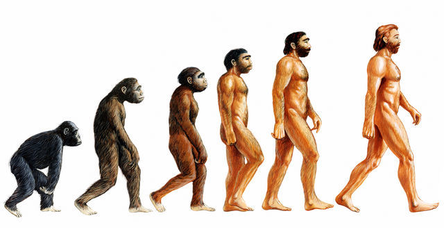 Charles Darwin Presents the Theory of Evolution