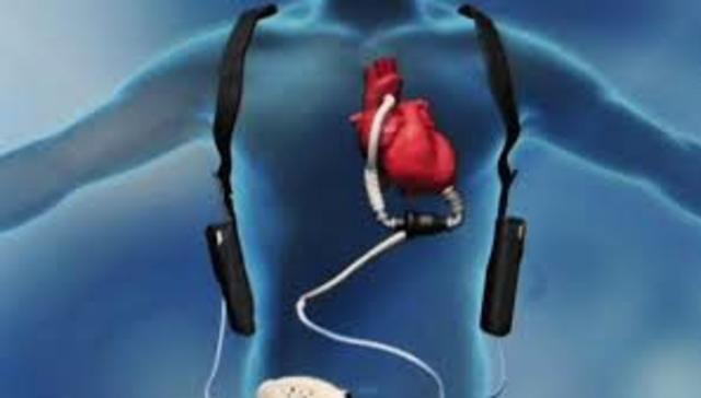 Se crearan organos artificiales