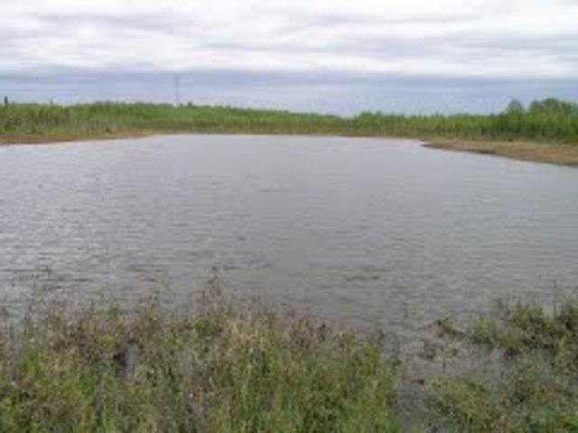 Swanson river oil field