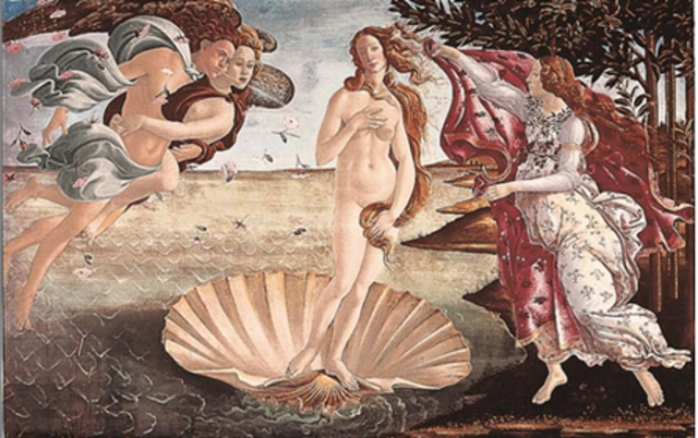 The Birth of Venus Has Been Displayed!