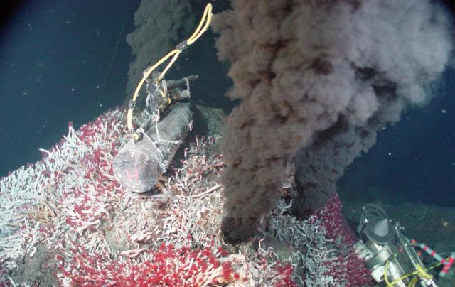 Deep Sea Life Discovered