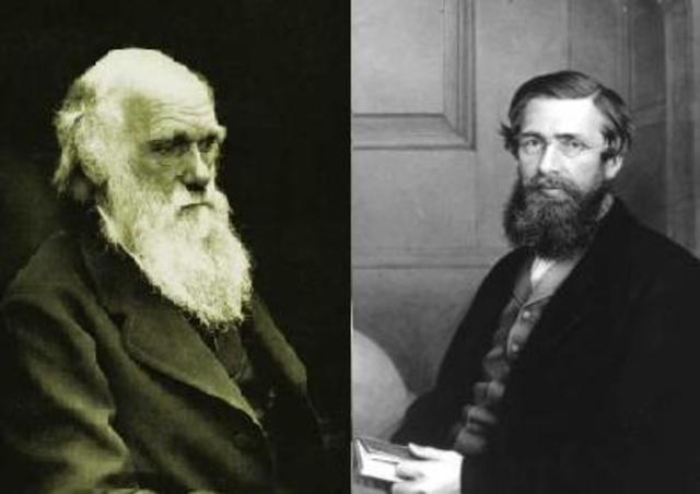 1858-  Alfred Russel Wallace published ideas of evolutionary processes