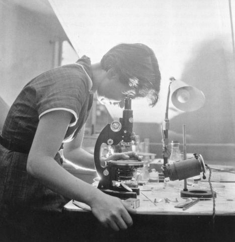 """1952-  Rosalind Franklin works with DNA and X-Ray crystallography and develops """"Image 51"""""""