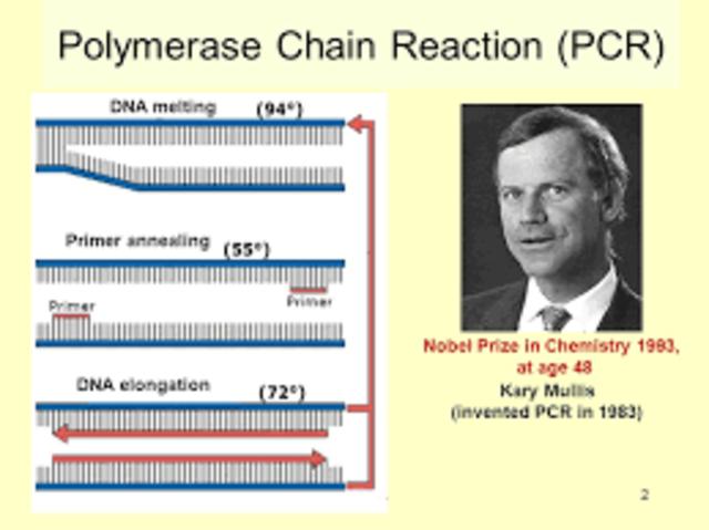 1983-  Kary Mullis develops Polymerase Chain Reaction