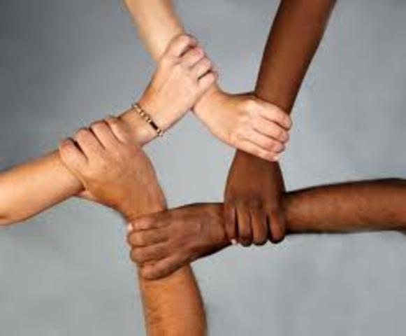 Ethnic Minority Achievement Grant (EMAG)