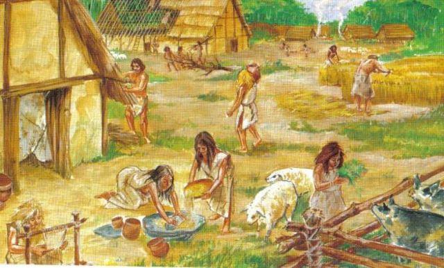 Edad de Piedra: Neolítico