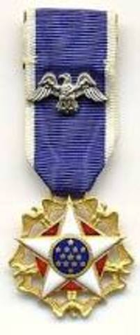Martin Luther King is rewarded the Presidential Medal of Freedom.