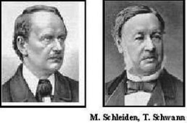 Matthias J. Schleider i Teodor Schwann estableixen la teoria cel·lular.