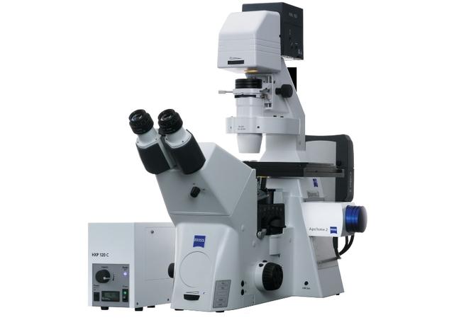 Интерференционно-контрастная микроскопия