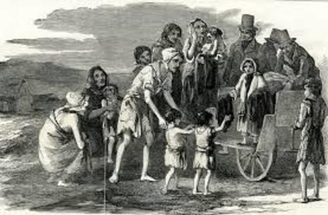 The Great Potato Famine