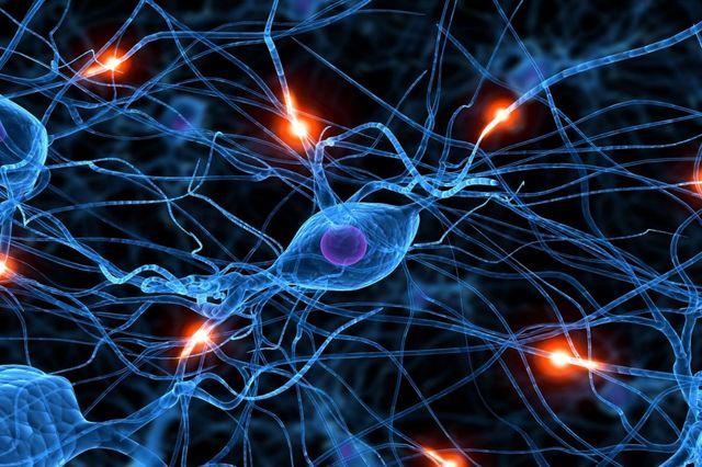 Первые нейросети