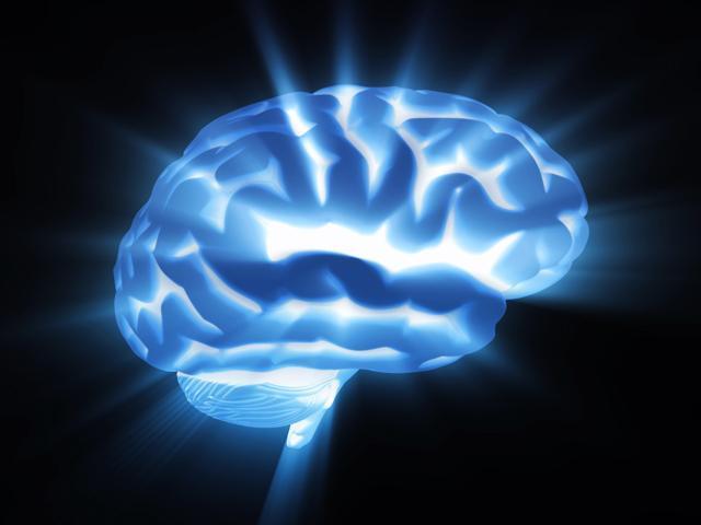 """Проект """"Голубой мозг"""""""
