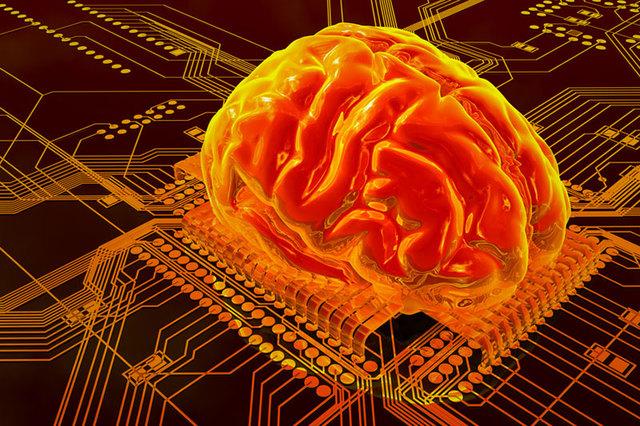Самый крупный в мире компьютерный мозг