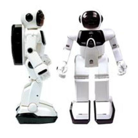 Робот, собирающий сам себя