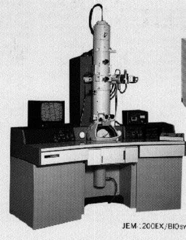 Primer microscopi electrònic