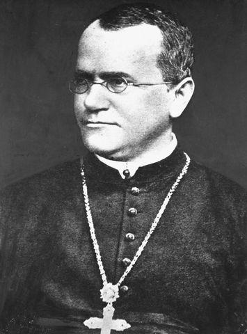 1860 Gregor Mendel, descubre las leyes de la herencia.